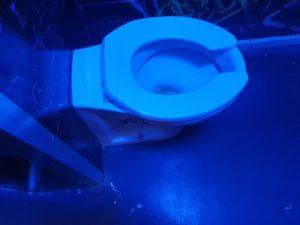 public toilet blocked drain wootton bassett